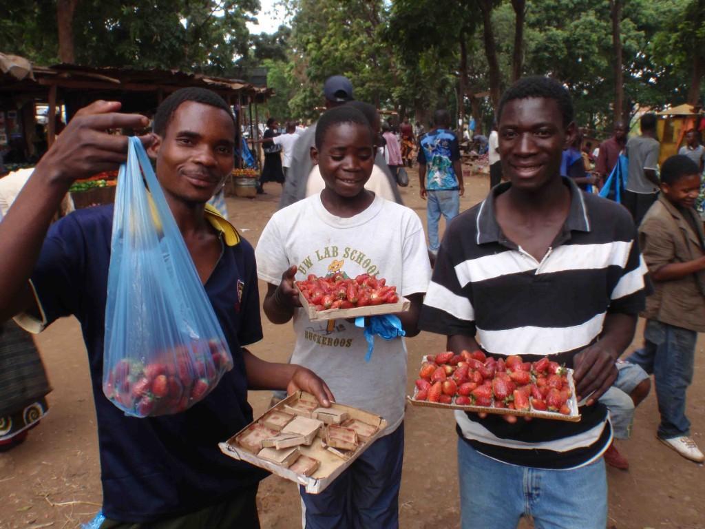 Jordgubbar sälj av fotfolk