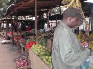 frukt o gront
