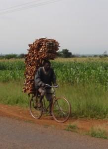 Ved på cykel