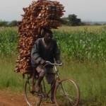 Ved transportör på landsbygden